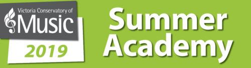 VCM Summer Academy Logo